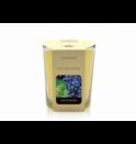 votivní svíčka ve skle Ripe Black Grapes BARVA: ŽLUTÁ
